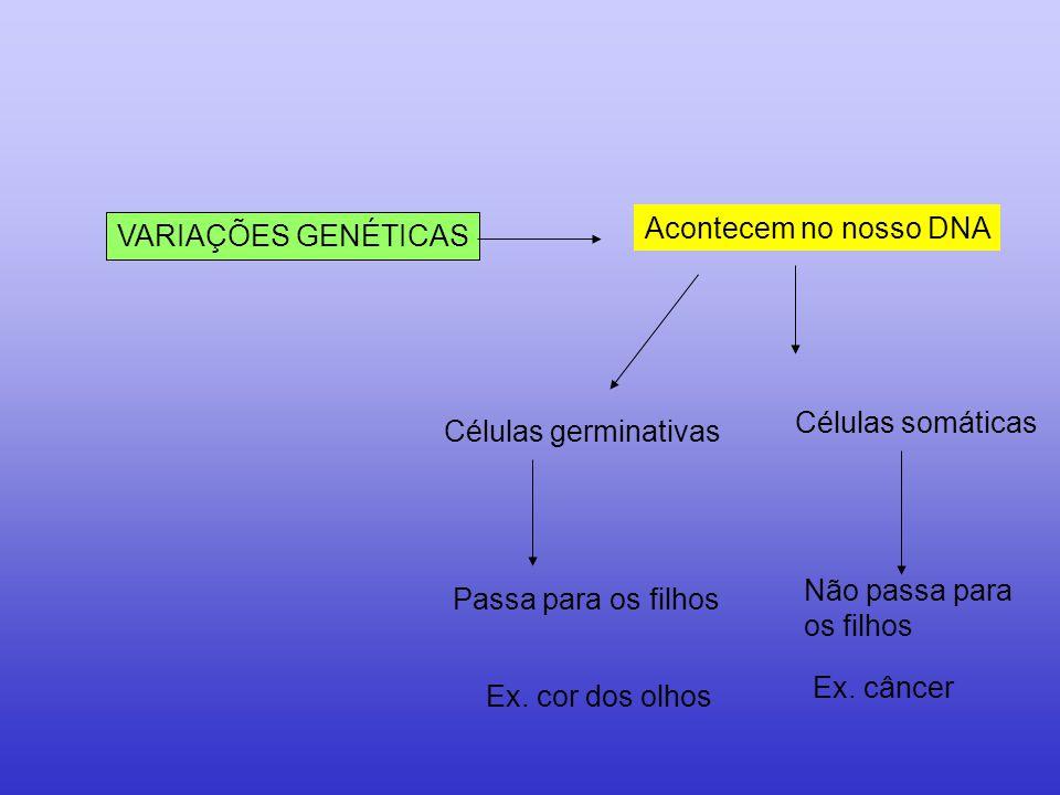 VARIAÇÕES GENÉTICAS Acontecem no nosso DNA Células germinativas Passa para os filhos Células somáticas Não passa para os filhos Ex. câncer Ex. cor dos