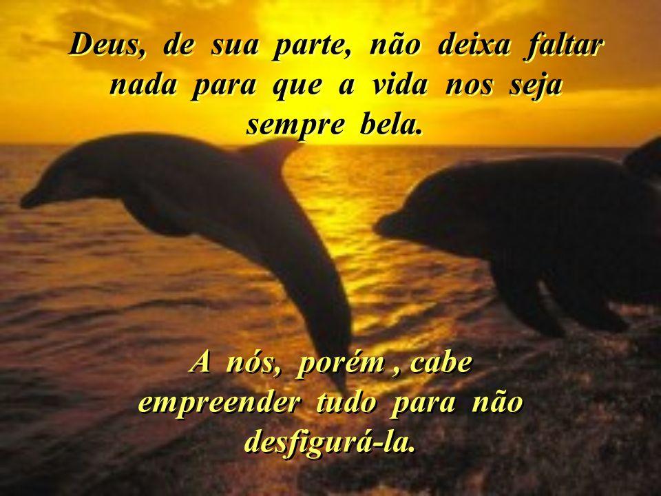 Ilustração: dynda@terra.com.br Missionário Redentorista