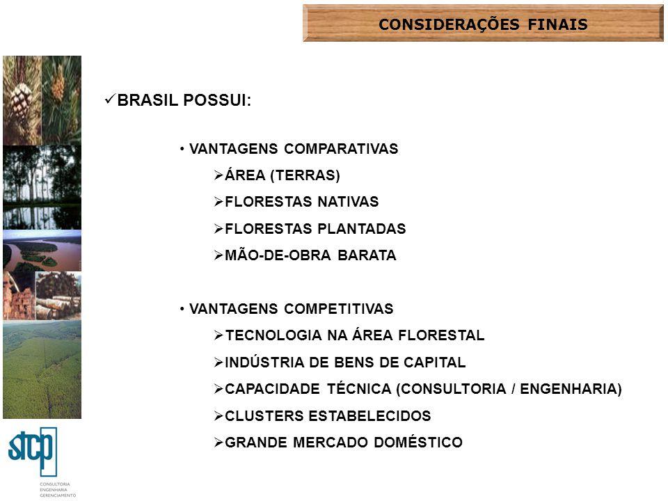 BRASIL POSSUI: VANTAGENS COMPARATIVAS  ÁREA (TERRAS)  FLORESTAS NATIVAS  FLORESTAS PLANTADAS  MÃO-DE-OBRA BARATA VANTAGENS COMPETITIVAS  TECNOLOG
