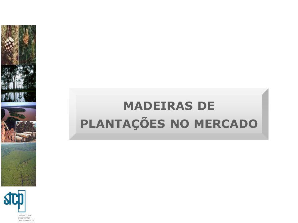 MADEIRAS DE PLANTAÇÕES NO MERCADO