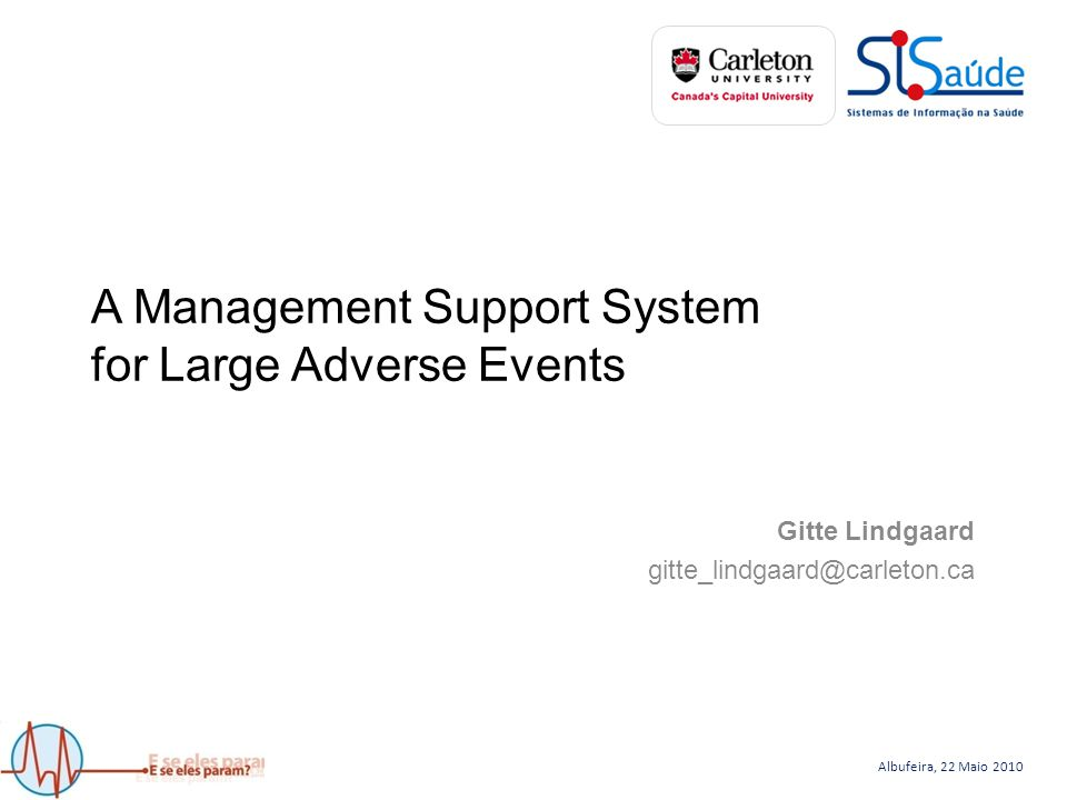 Albufeira, 22 Maio 2010 A Management Support System for Large Adverse Events
