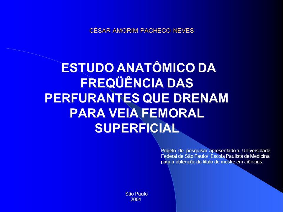 CÉSAR AMORIM PACHECO NEVES ESTUDO ANATÔMICO DA FREQÜÊNCIA DAS PERFURANTES QUE DRENAM PARA VEIA FEMORAL SUPERFICIAL São Paulo 2004 Projeto de pesquisar
