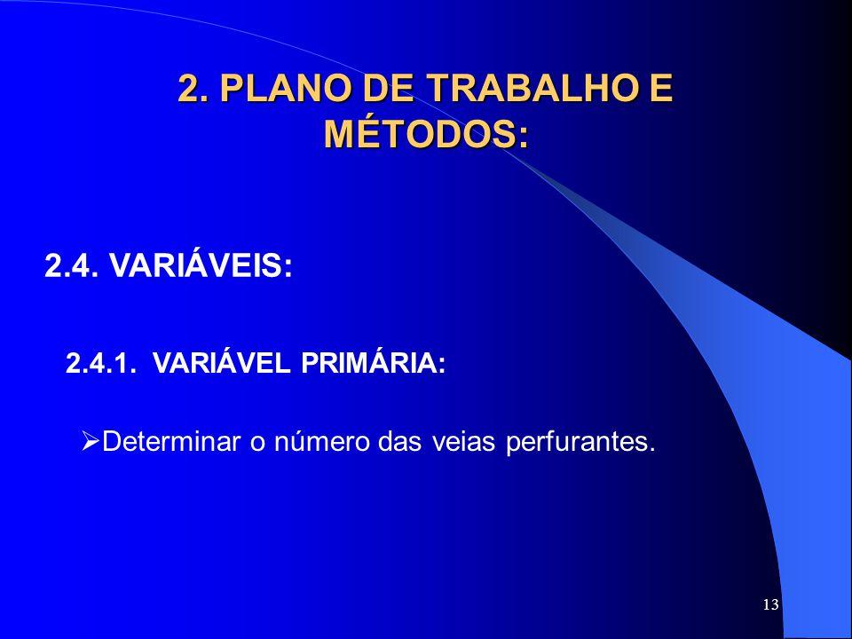 13 2. PLANO DE TRABALHO E MÉTODOS: 2.4. VARIÁVEIS: 2.4.1. VARIÁVEL PRIMÁRIA:  Determinar o número das veias perfurantes.
