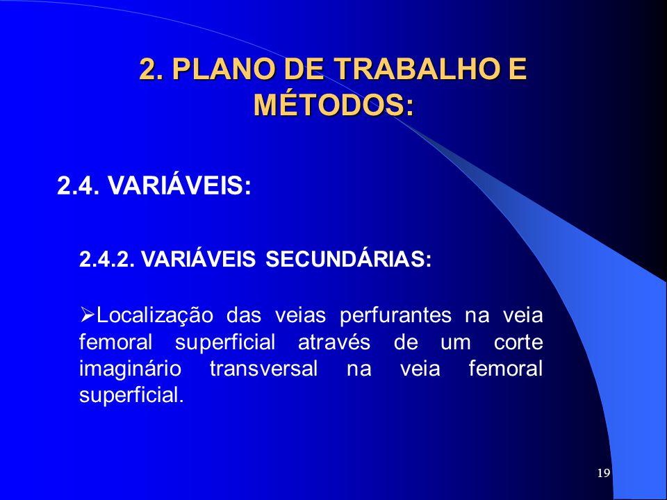 19 2. PLANO DE TRABALHO E MÉTODOS: 2.4. VARIÁVEIS: 2.4.2. VARIÁVEIS SECUNDÁRIAS:  Localização das veias perfurantes na veia femoral superficial atrav