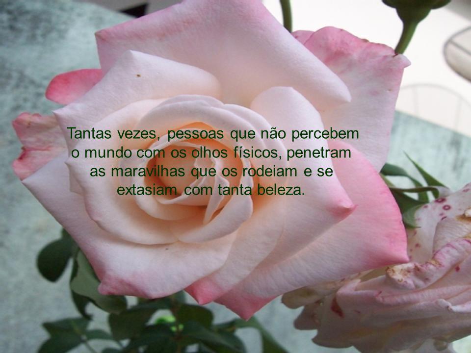 E ainda mergulhado em profundas reflexões, levou aquela feia flor ao nariz e sentiu a fragrância de uma rosa... Verdadeiramente cego é todo aquele que