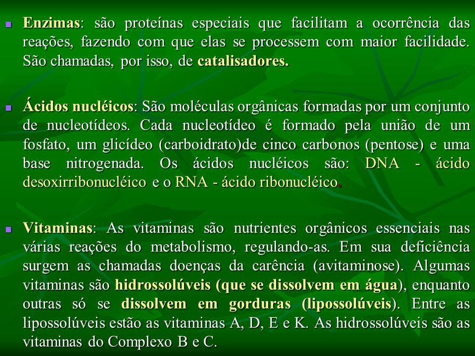 Enzimas: são proteínas especiais que facilitam a ocorrência das reações, fazendo com que elas se processem com maior facilidade.