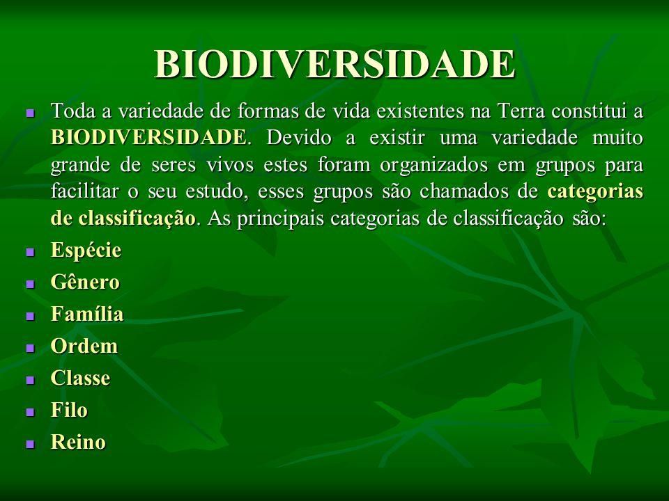BIODIVERSIDADE Toda a variedade de formas de vida existentes na Terra constitui a BIODIVERSIDADE.