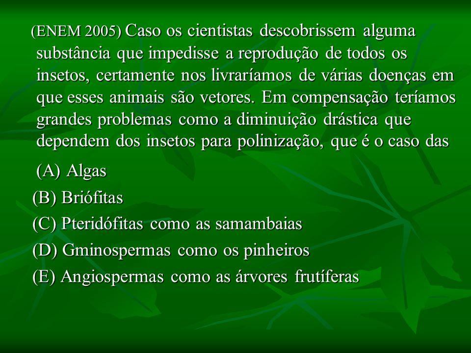 (ENEM 2005) Caso os cientistas descobrissem alguma substância que impedisse a reprodução de todos os insetos, certamente nos livraríamos de várias doenças em que esses animais são vetores.