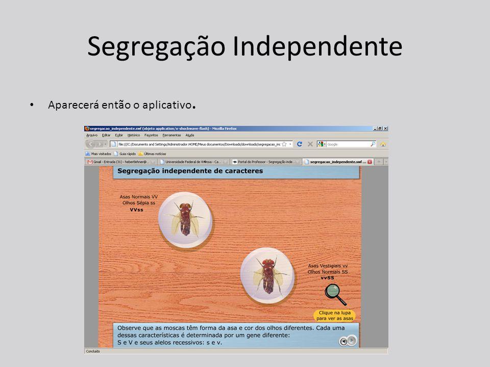 Segregação Independente Aparecerá então o aplicativo.