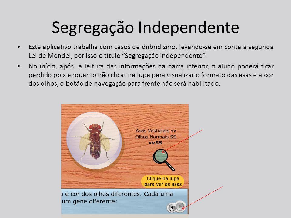 Segregação Independente Este aplicativo trabalha com casos de diibridismo, levando-se em conta a segunda Lei de Mendel, por isso o título Segregação independente .