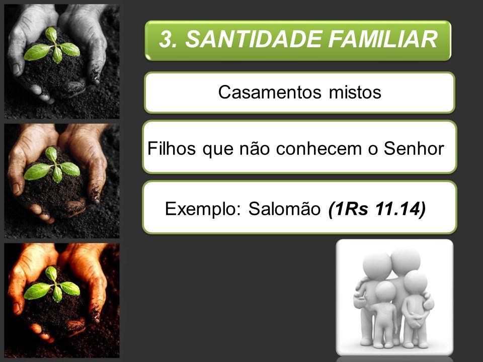 3. SANTIDADE FAMILIAR Casamentos mistos Filhos que não conhecem o SenhorExemplo: Salomão (1Rs 11.14)