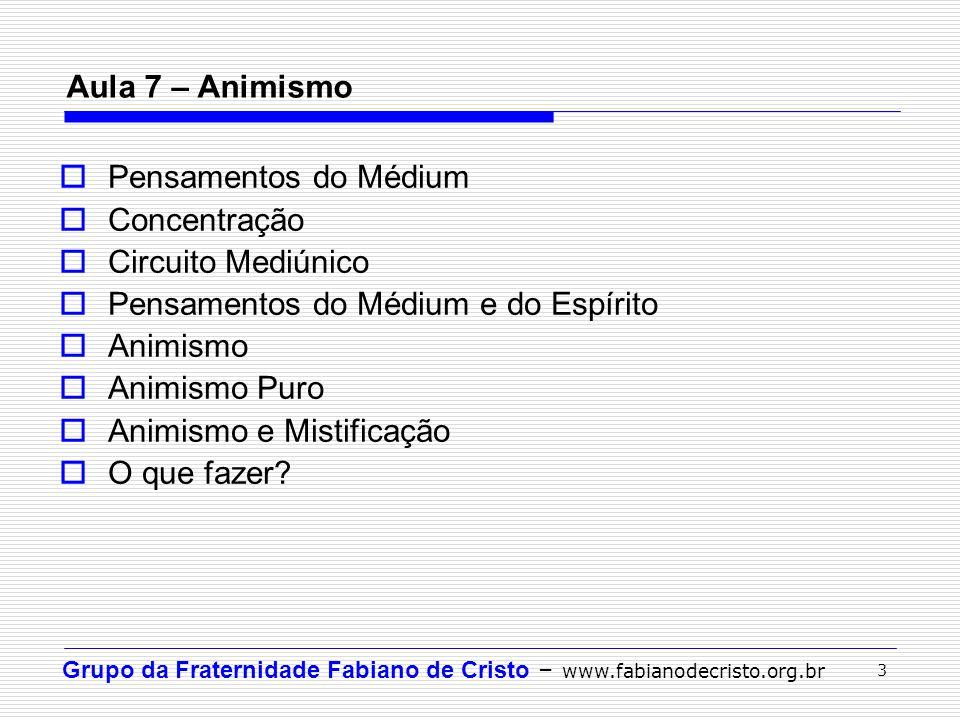 Grupo da Fraternidade Fabiano de Cristo – www.fabianodecristo.org.br 3 Aula 7 – Animismo  Pensamentos do Médium  Concentração  Circuito Mediúnico 