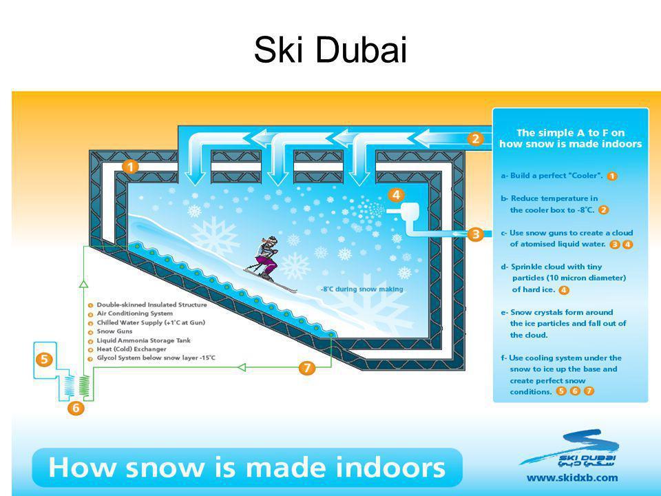 © Prof. Carlos Maia Ski Dubai