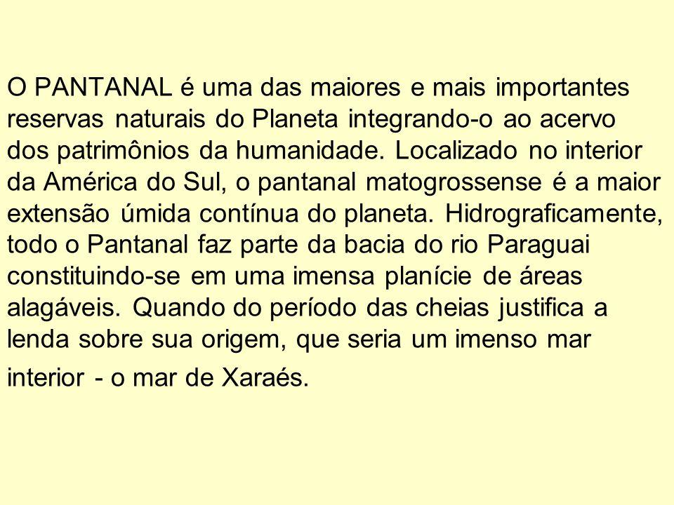O PANTANAL é uma das maiores e mais importantes reservas naturais do Planeta integrando-o ao acervo dos patrimônios da humanidade.