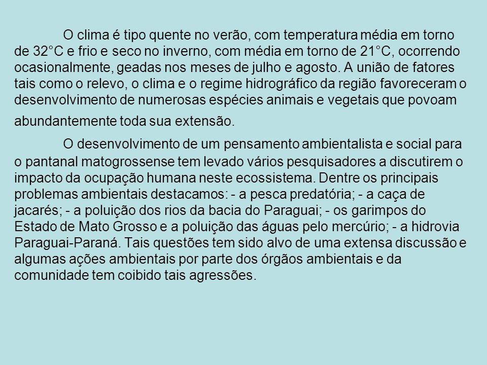 · Principais Cidades da Região Centro-Oeste: - Estado do Mato-Grosso: Cuiabá, Várzea Grande, Rondonópolis, Cáceres, Sinop, Tangará da Serra, Barra do Garças, Alta Floresta.