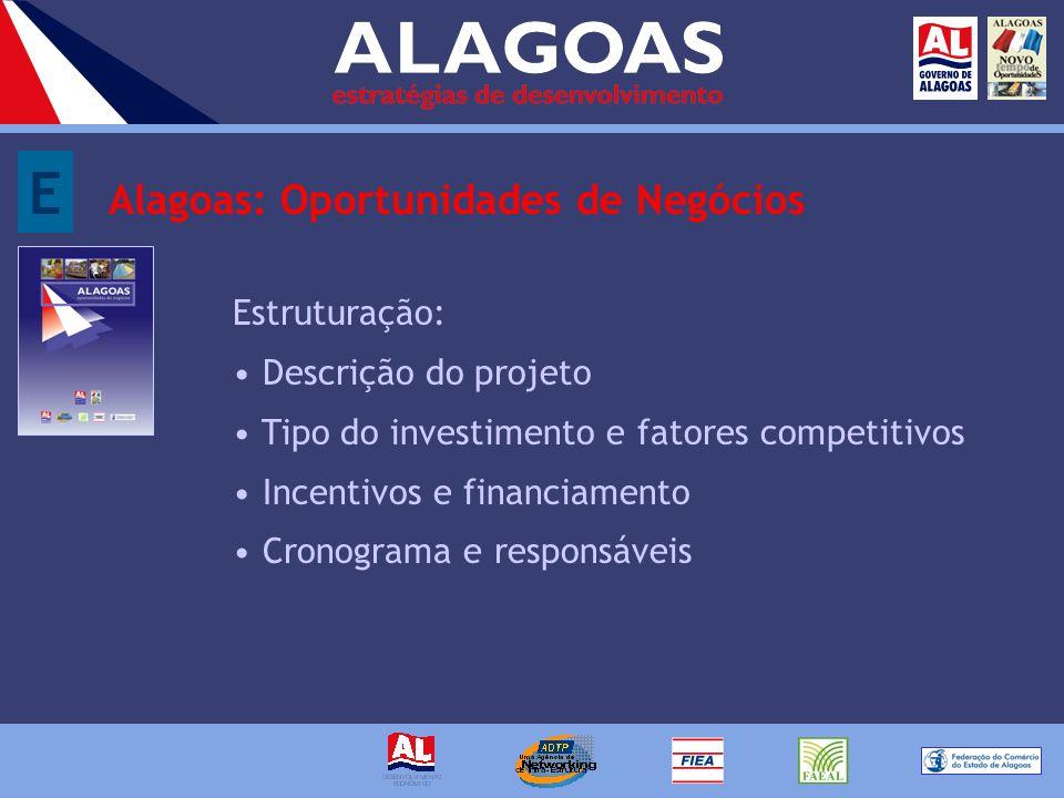E Alagoas: Oportunidades de Negócios Estruturação: Descrição do projeto Tipo do investimento e fatores competitivos Incentivos e financiamento Cronograma e responsáveis