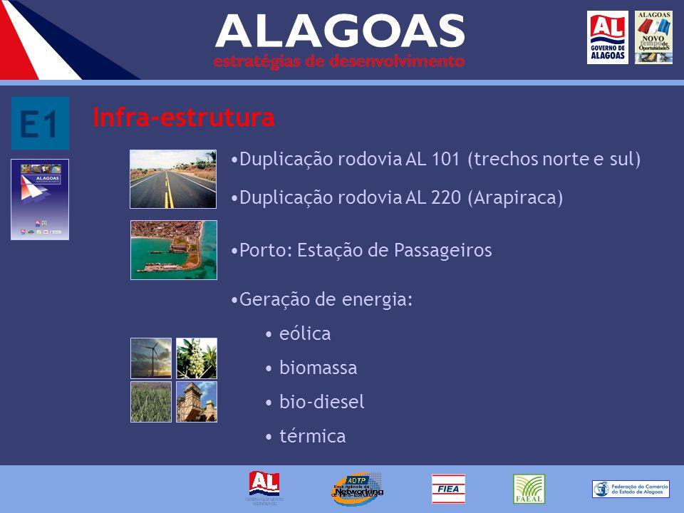 E1 Infra-estrutura Porto: Estação de Passageiros Duplicação rodovia AL 101 (trechos norte e sul) Duplicação rodovia AL 220 (Arapiraca) Geração de energia: eólica biomassa bio-diesel térmica