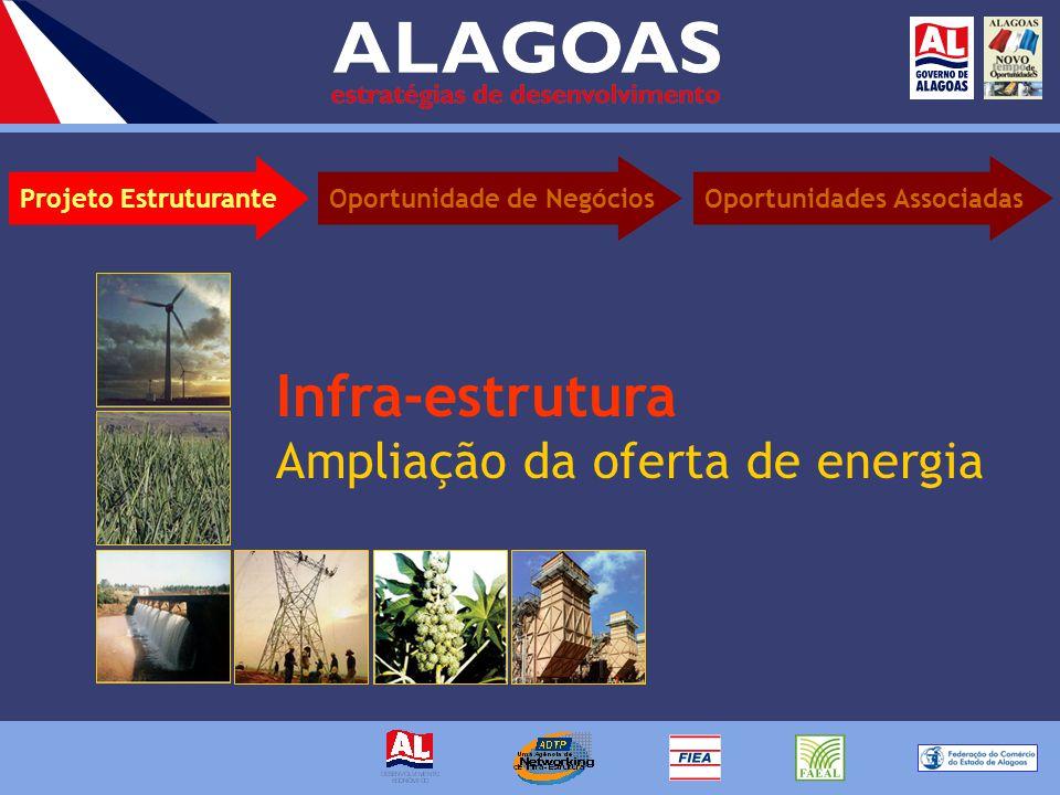Infra-estrutura Ampliação da oferta de energia Projeto EstruturanteOportunidades AssociadasOportunidade de Negócios