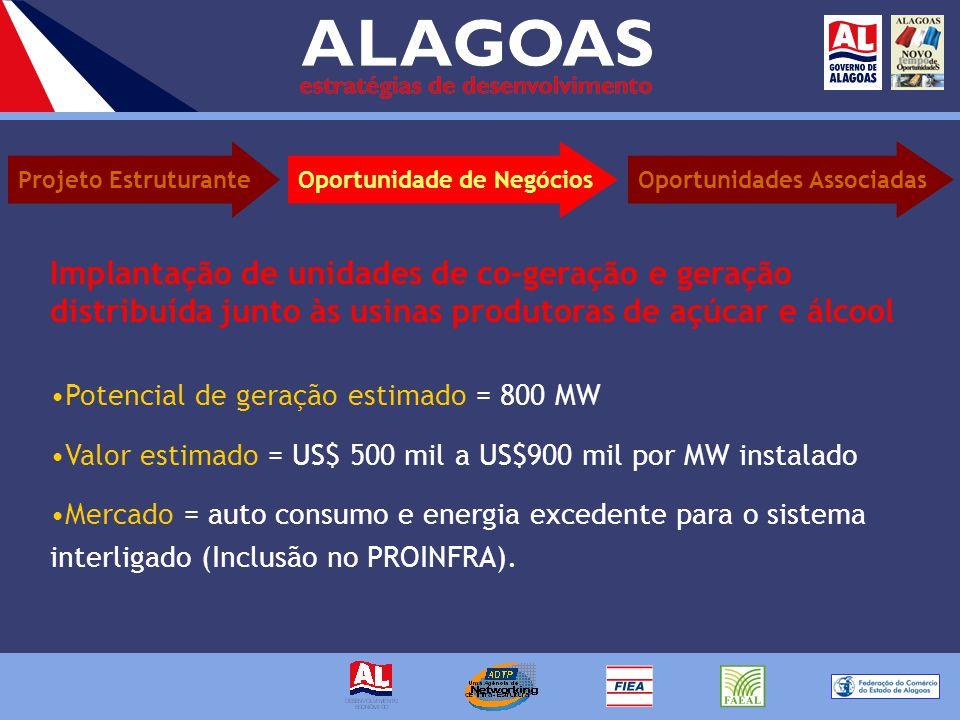 Potencial de geração estimado = 800 MW Valor estimado = US$ 500 mil a US$900 mil por MW instalado Mercado = auto consumo e energia excedente para o sistema interligado (Inclusão no PROINFRA).