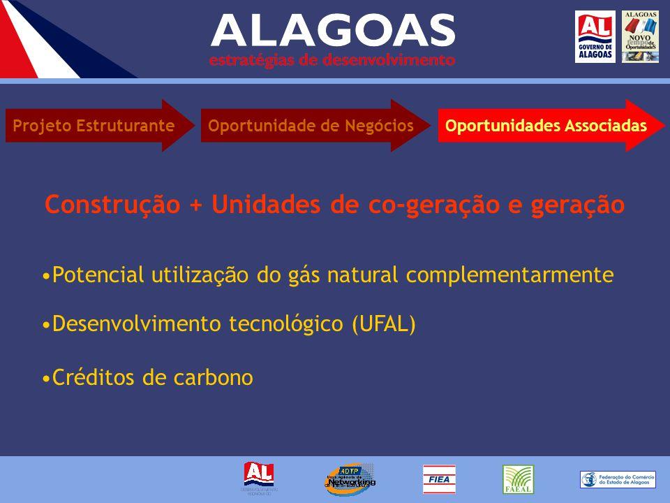 Construção + Unidades de co-geração e geração Potencial utiliza ção do gás natural complementarmente Desenvolvimento tecnológico (UFAL) Créditos de carbono Projeto EstruturanteOportunidades AssociadasOportunidade de Negócios