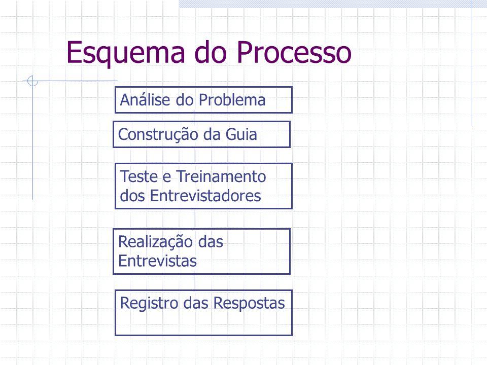 Esquema do Processo Análise do Problema Construção da Guia Teste e Treinamento dos Entrevistadores Realização das Entrevistas Registro das Respostas
