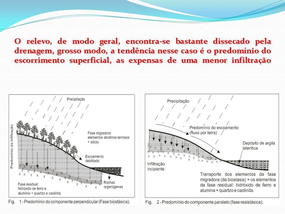 O relevo, de modo geral, encontra-se bastante dissecado pela drenagem, grosso modo, a tendência nesse caso é o predomínio do escorrimento superficial,
