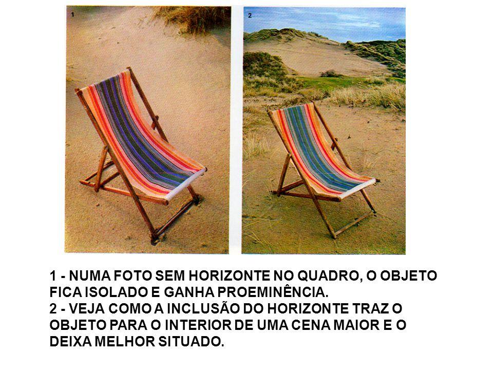 3 - O HORIZONTE, NESSE CASO, CORTOU A FOTO EM DUAS PARTES E FEZ COM QUE ELA PERDESSE O EQUILÍBRIO.