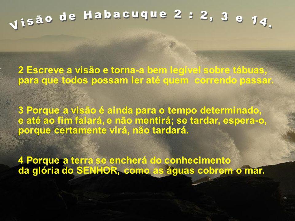 ALFABETIZAÇÃO PELA BÍBLIA Visão de Habacuque 2:2,3 e 12. UM MINISTÉRIO DE DEUS Um mundo bem-aventurado Apocalipse 1:3. Para a Igreja de Jesus abençoar