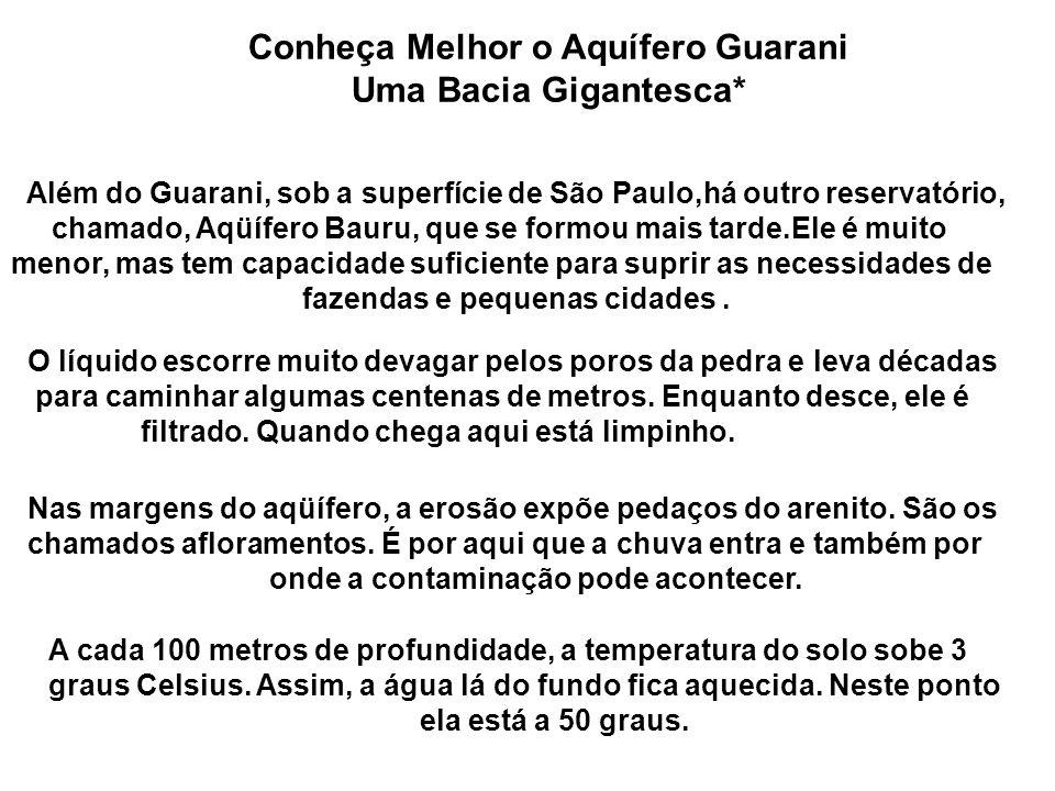 Conheça Melhor o Aquífero Guarani Uma Bacia Gigantesca* Além do Guarani, sob a superfície de São Paulo,há outro reservatório, chamado, Aqüífero Bauru, que se formou mais tarde.Ele é muito menor, mas tem capacidade suficiente para suprir as necessidades de fazendas e pequenas cidades.