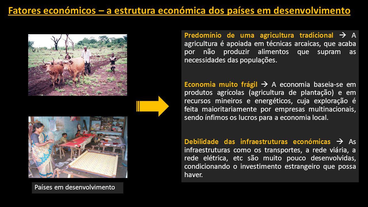 Fatores económicos – a estrutura económica dos países em desenvolvimento Predomínio de uma agricultura tradicional  A agricultura é apoiada em técnicas arcaicas, que acaba por não produzir alimentos que supram as necessidades das populações.