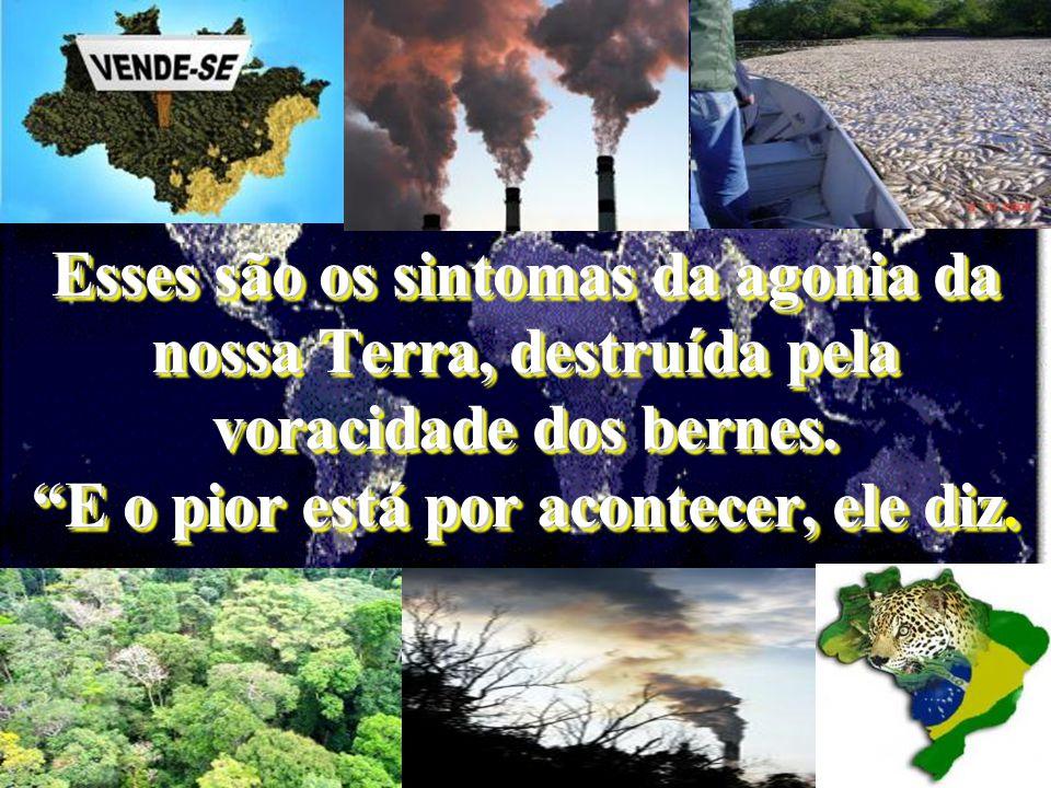 a atmosfera está se aquecendo, as geleiras estão derretendo, a poluição do ambiente aumenta, acontecem catástrofes naturais numa intensidade desconhec