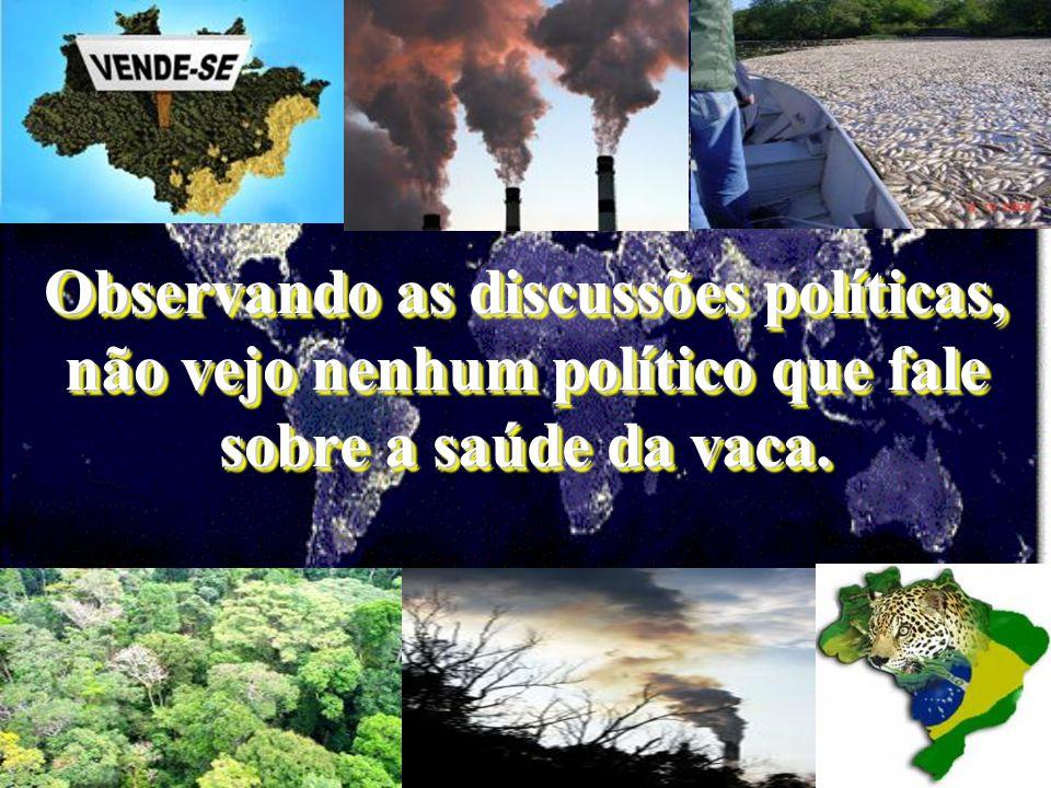 """Ecossistemas inteiros serão extintos, e os sobreviventes terão de se adaptar a um clima infernal..."""" (Folha de S.Paulo, caderno Mais, 22/ 01/06, pág."""