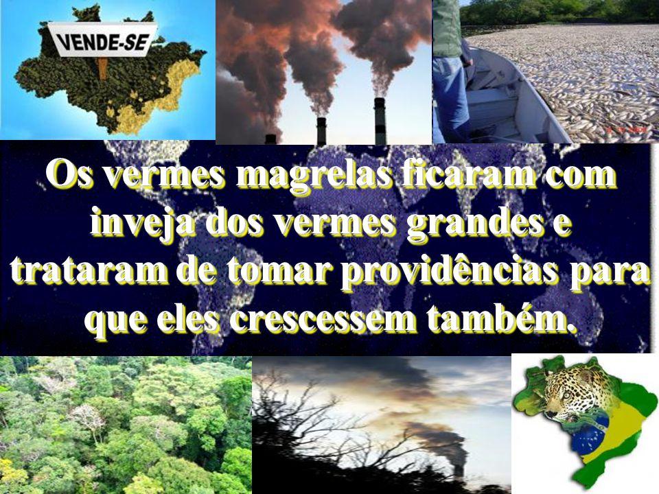 a atmosfera está se aquecendo, as geleiras estão derretendo, a poluição do ambiente aumenta, acontecem catástrofes naturais numa intensidade desconhecida.
