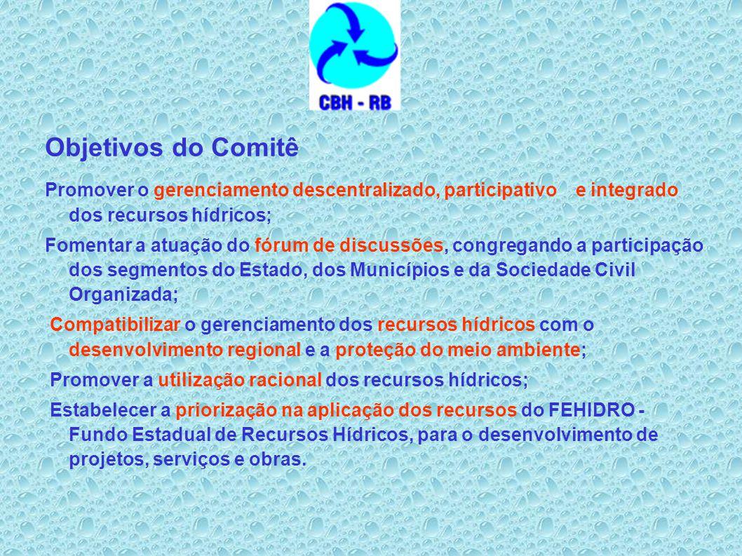 Objetivos do Comitê Promover o gerenciamento descentralizado, participativo e integrado dos recursos hídricos; Fomentar a atuação do fórum de discussõ