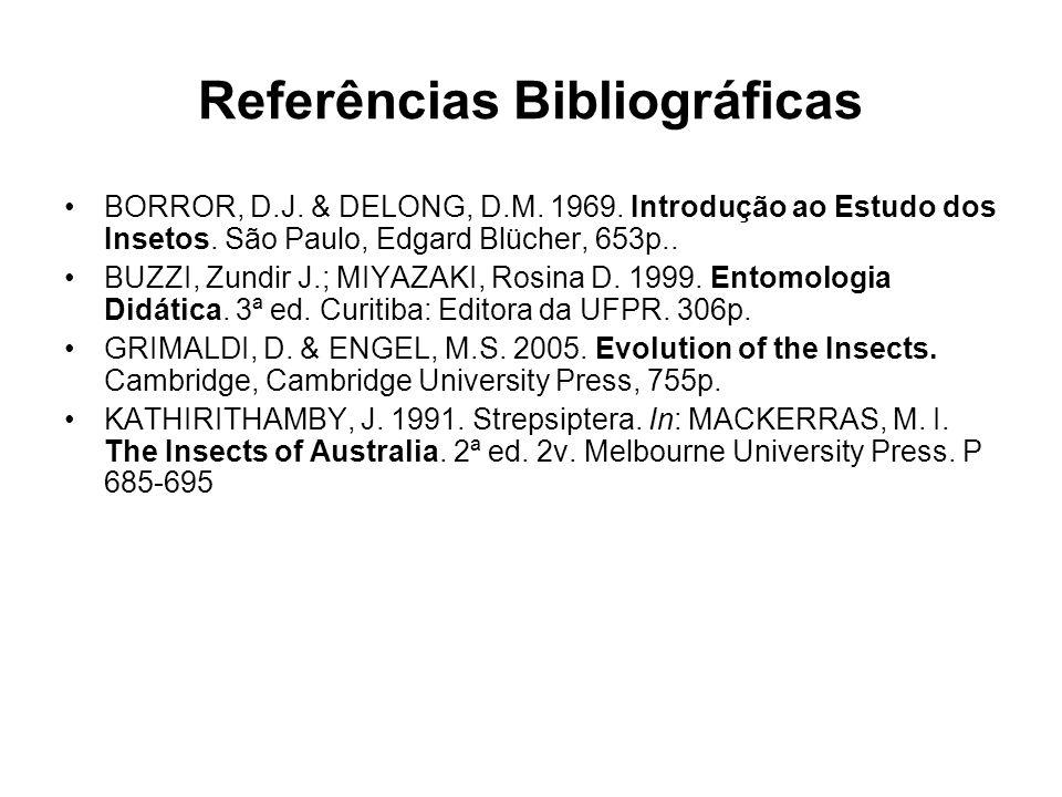 Referências Bibliográficas BORROR, D.J. & DELONG, D.M. 1969. Introdução ao Estudo dos Insetos. São Paulo, Edgard Blücher, 653p.. BUZZI, Zundir J.; MIY