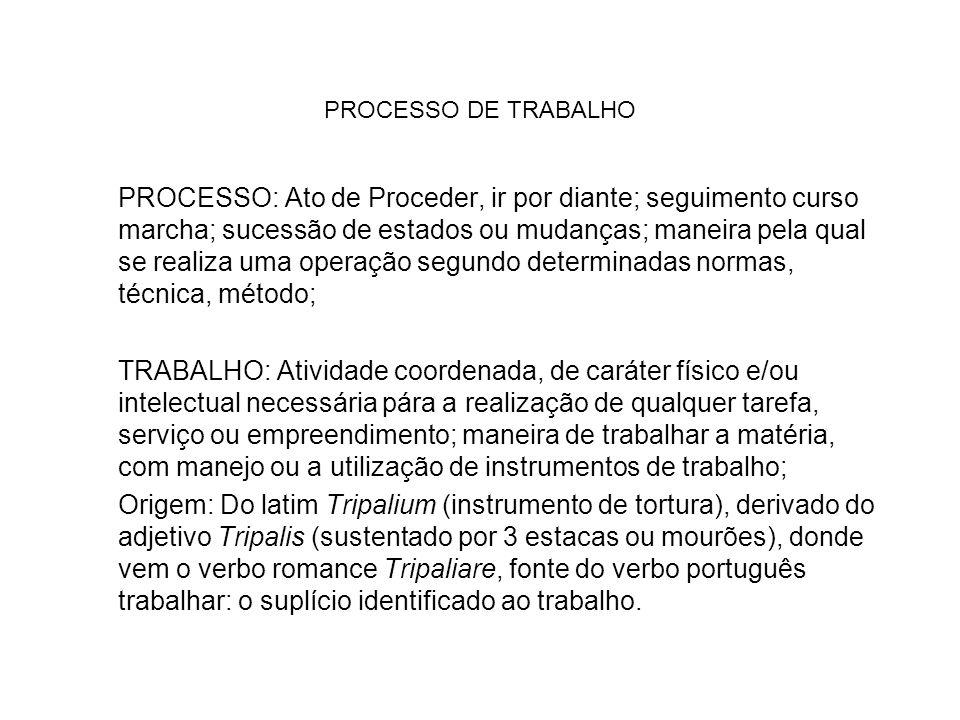 PROCESSO DE TRABALHO PROCESSO: Ato de Proceder, ir por diante; seguimento curso marcha; sucessão de estados ou mudanças; maneira pela qual se realiza
