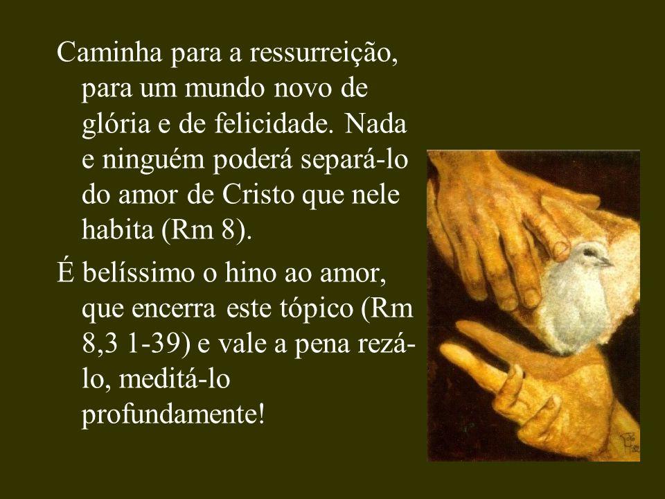 Caminha para a ressurreição, para um mundo novo de glória e de felicidade. Nada e ninguém poderá separá-lo do amor de Cristo que nele habita (Rm 8). É