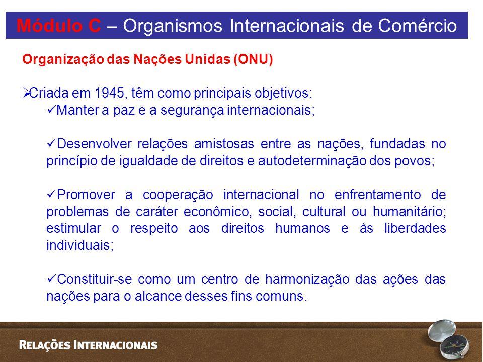 Organização das Nações Unidas (ONU)  Criada em 1945, têm como principais objetivos: Manter a paz e a segurança internacionais; Desenvolver relações amistosas entre as nações, fundadas no princípio de igualdade de direitos e autodeterminação dos povos; Promover a cooperação internacional no enfrentamento de problemas de caráter econômico, social, cultural ou humanitário; estimular o respeito aos direitos humanos e às liberdades individuais; Constituir-se como um centro de harmonização das ações das nações para o alcance desses fins comuns.