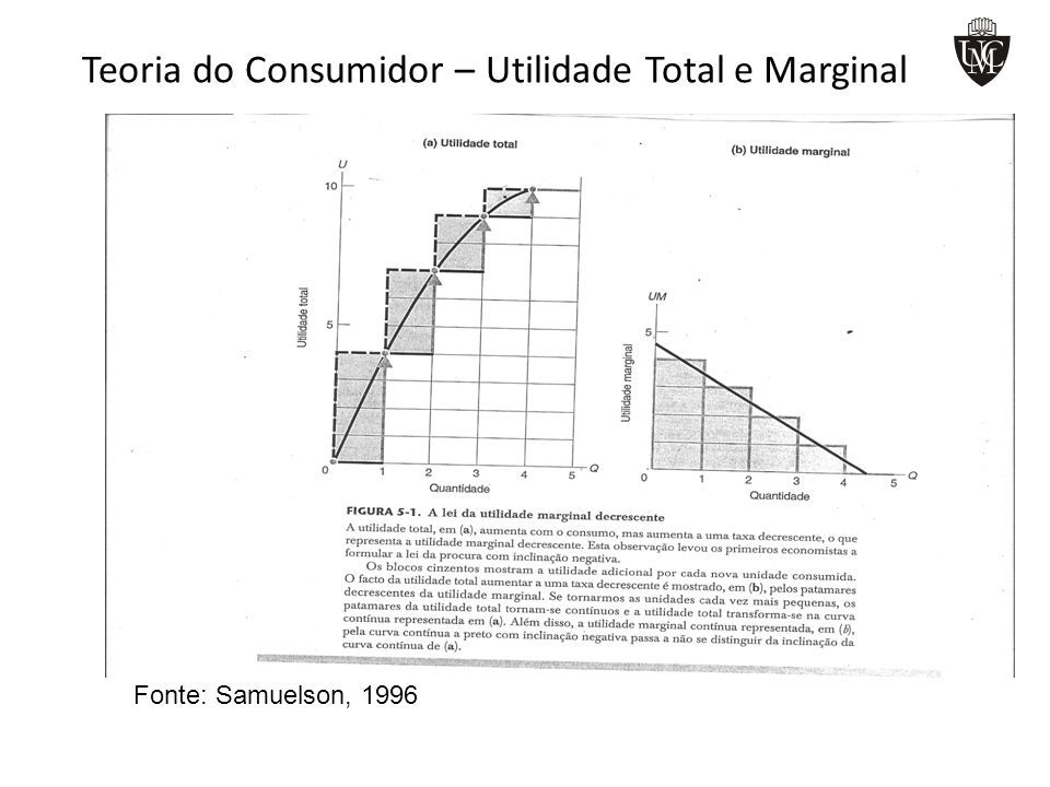 Teoria do Consumidor – Equilíbrio do consumidor geometricamente Geometricamente, o consumidor esta em equilíbrio no ponto em que a inclinação da recta orçamental é exactamente igual a inclinação da curva da indiferença.