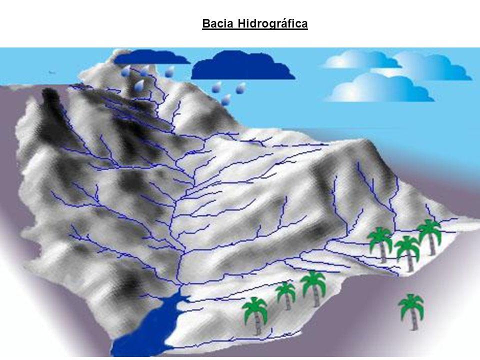 Partes de Rede de Drenagem: FOZ - ou DESÁGUE - ou DESEMBOCADURA - ESTUÁRIO: canal único - DELTA: múltiplos canais - MISTA: estuário e delta