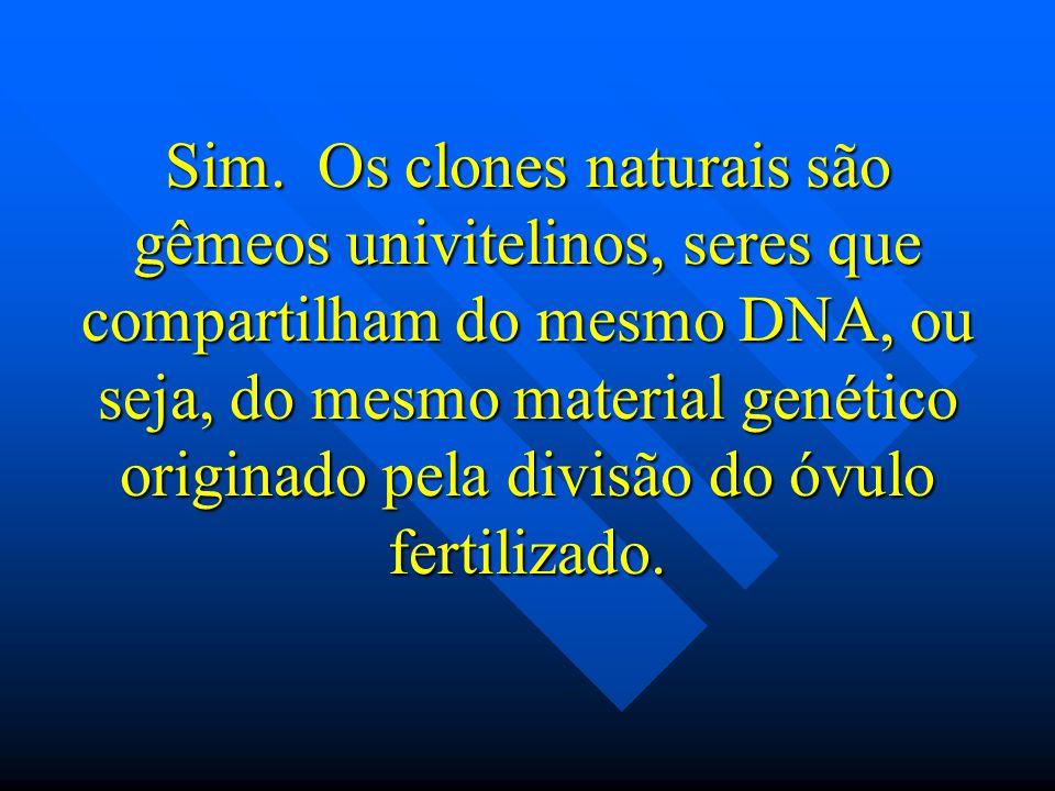 Sim. Os clones naturais são gêmeos univitelinos, seres que compartilham do mesmo DNA, ou seja, do mesmo material genético originado pela divisão do óv