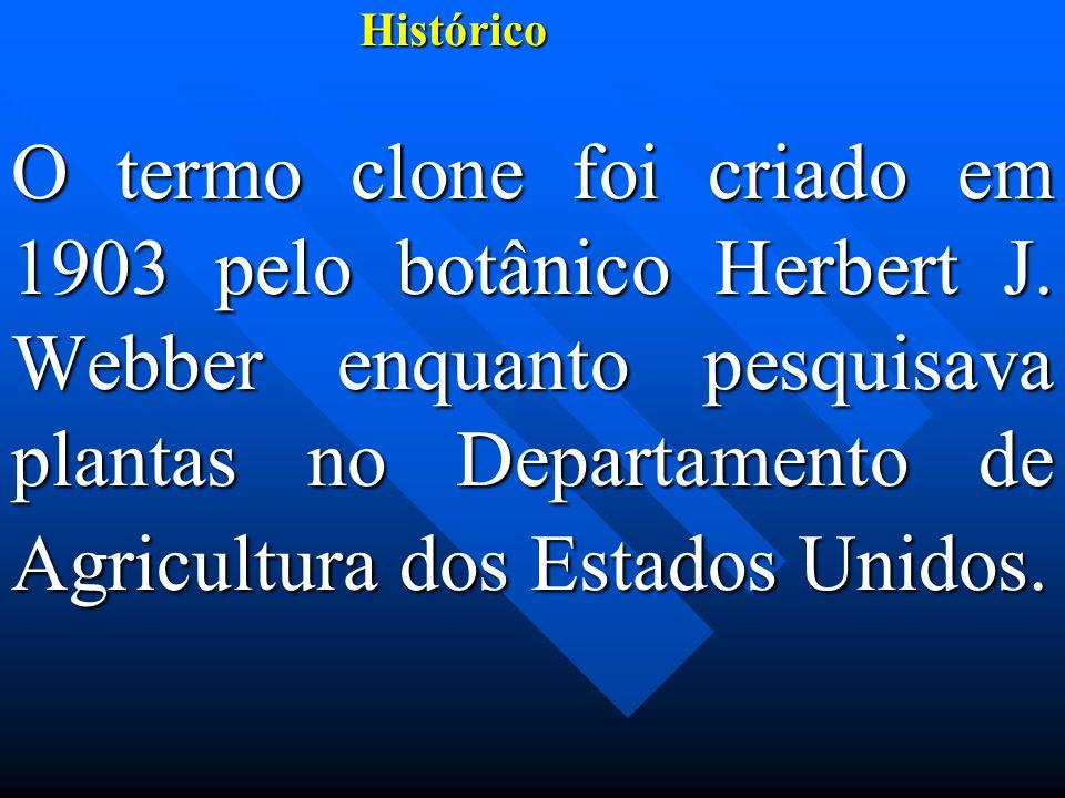 Histórico Histórico O termo clone foi criado em 1903 pelo botânico Herbert J.