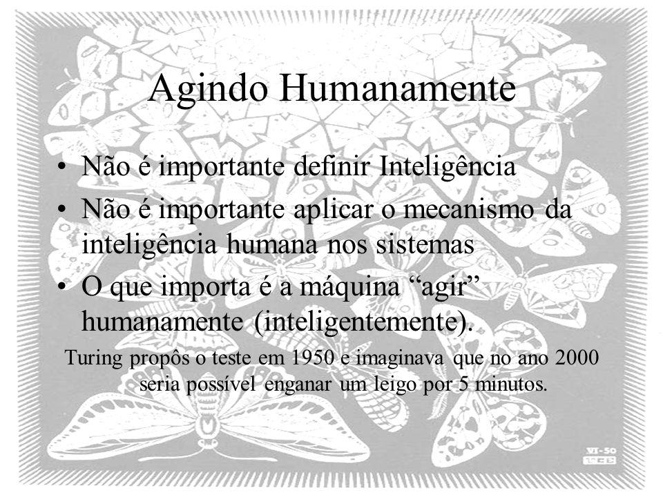 Agindo Humanamente Não é importante definir Inteligência Não é importante aplicar o mecanismo da inteligência humana nos sistemas O que importa é a máquina agir humanamente (inteligentemente).