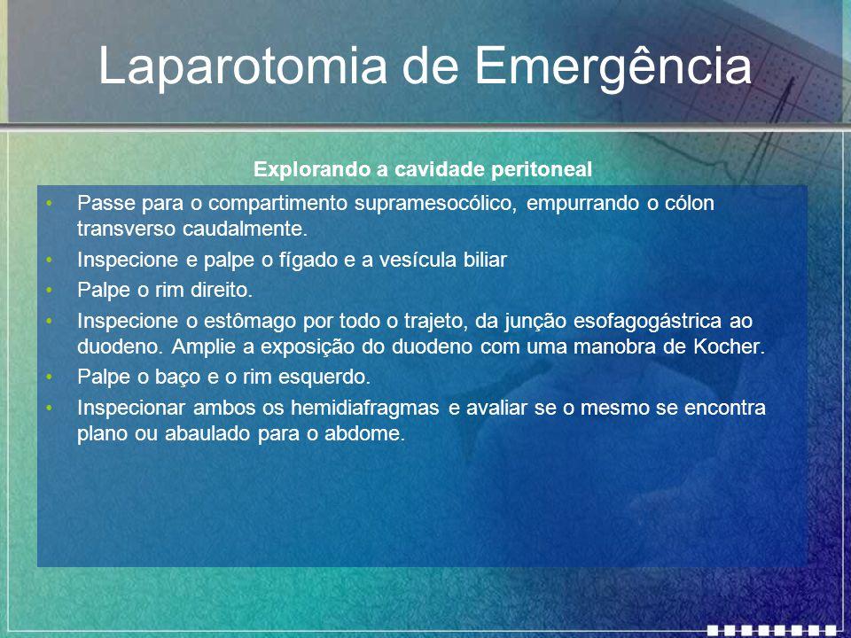 Laparotomia de Emergência Passe para o compartimento supramesocólico, empurrando o cólon transverso caudalmente. Inspecione e palpe o fígado e a vesíc