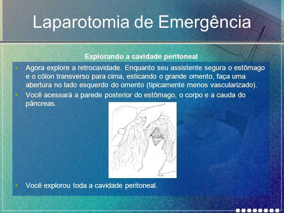 Laparotomia de Emergência Agora explore a retrocavidade. Enquanto seu assistente segura o estômago e o cólon transverso para cima, esticando o grande