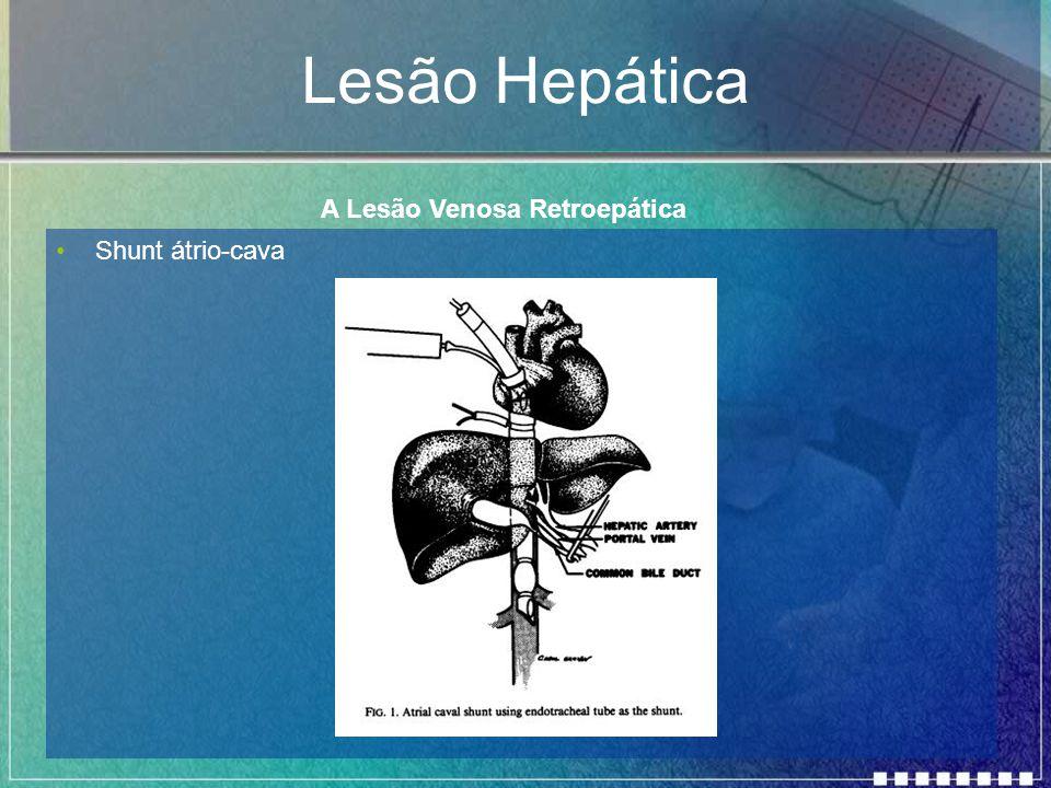 Lesão Hepática Shunt átrio-cava A Lesão Venosa Retroepática