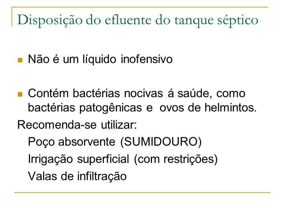 Disposição do efluente do tanque séptico Não é um líquido inofensivo Contém bactérias nocivas á saúde, como bactérias patogênicas e ovos de helmintos.