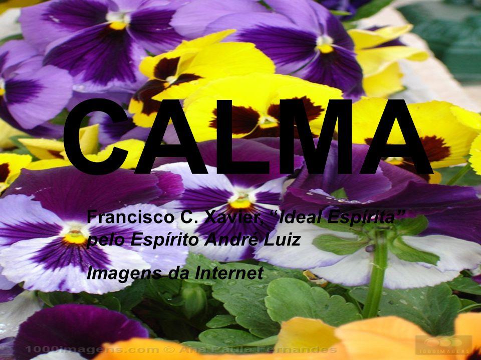 CALMA Francisco C. Xavier, Ideal Espírita pelo Espírito André Luiz Imagens da Internet