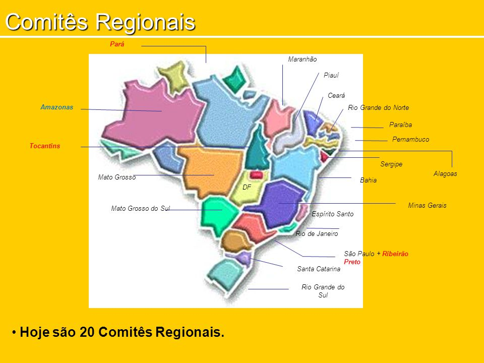 Pará Piauí Ceará Paraíba Pernambuco Bahia Rio de Janeiro São Paulo + Ribeirão Preto Rio Grande do Sul Tocantins Alagoas Mato Grosso Minas Gerais Comit