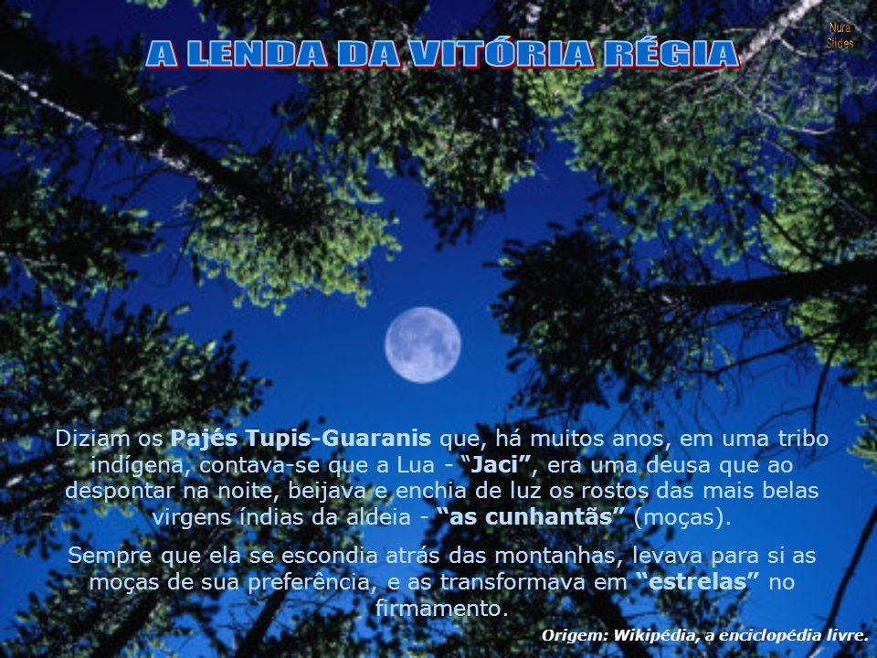Diziam os Pajés Tupis-Guaranis que, há muitos anos, em uma tribo indígena, contava-se que a Lua - Jaci , era uma deusa que ao despontar na noite, beijava e enchia de luz os rostos das mais belas virgens índias da aldeia - as cunhantãs (moças).